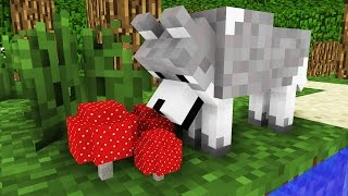 Wolf Life: The Hunger -- Minecraft Animation