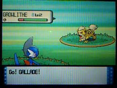 shiny growlithe with pokeradar + SHINY PATCH!!!