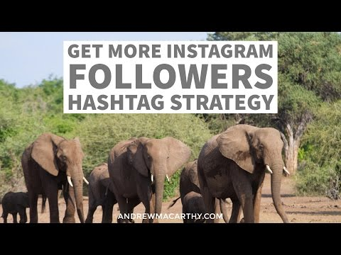 Get More Instagram Followers Today With This Clever Hashtag Strategy