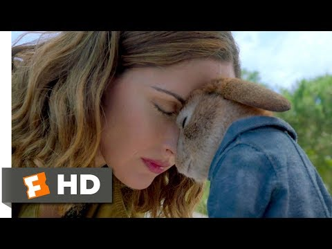 Peter Rabbit (2018) - Forgiveness Scene (10/10) | Movieclips