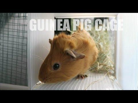 Modular PVC Guinea Pig Cage & Coroplast Ramp