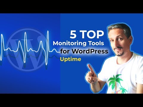 Monitor Website Uptime: 5 Top WordPress Downtime Monitoring Services