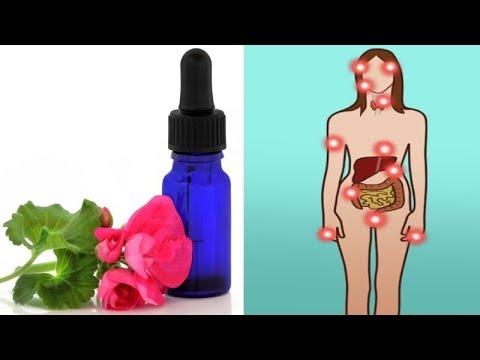 5 Reasons You Need A Bottle Of Geranium Essential Oil In Your Home