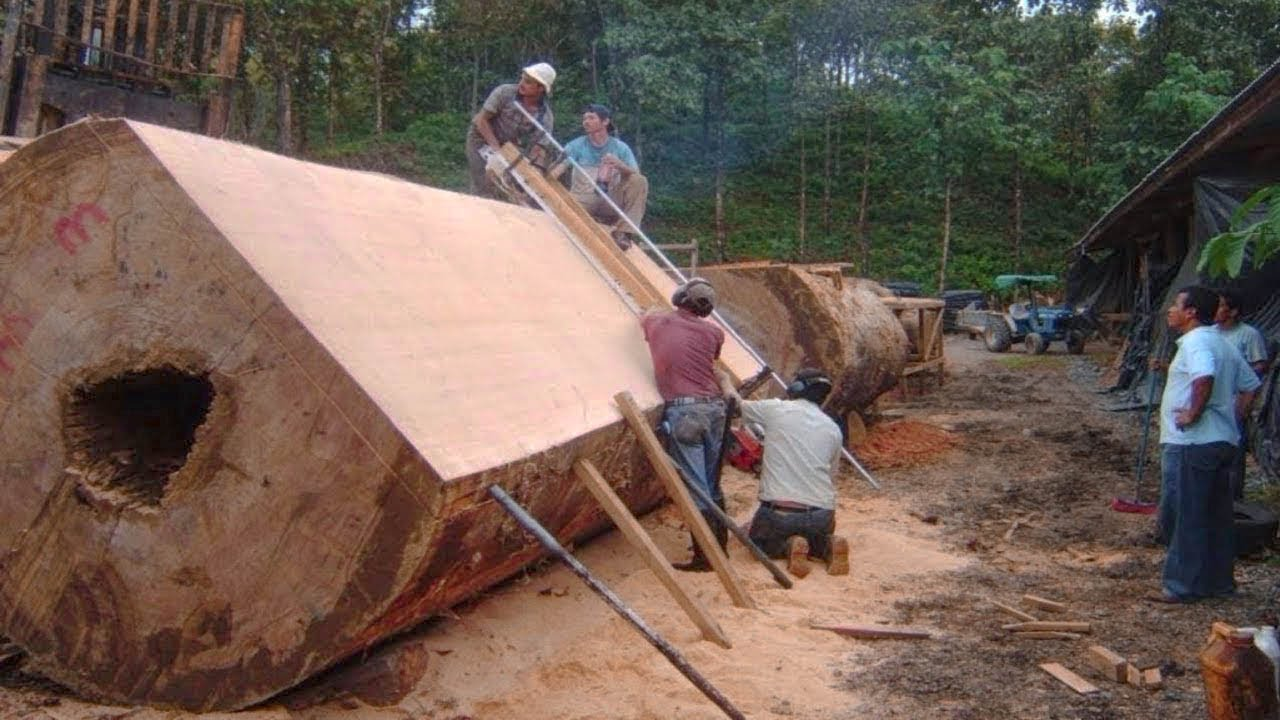 This monster wood sawmill machine is INCREDIBLE. Amazing firewood processor & wood cutting equipment
