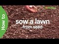 How to sow a lawn from seed | Garden Goals | Homebase