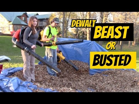 Dewalt Outdoor Power tools- Beast or Busted - Gas VS Electric / Battery  Blower & Trimmer comparison