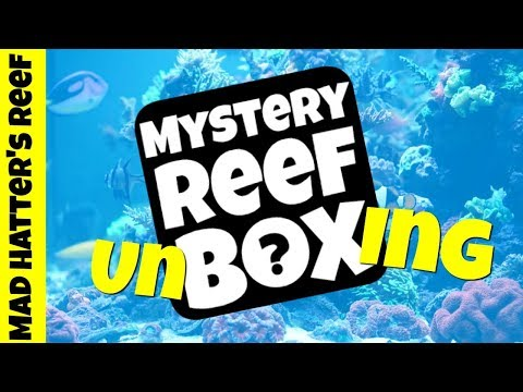 Mystery Reef Box May Unboxing