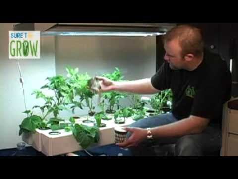 Sure To Grow introduces their new hydroponic inserts