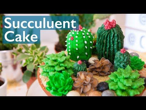 Succulent Cake with Cupcake Jemma!