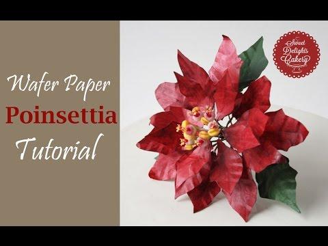 Wafer Paper Poinsettia Trailer