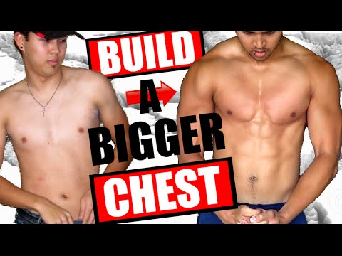 HOW TO GET A BIGGER CHEST | COMPLETE GUIDE FOR SKINNY GUYS | ECTOMORPH TRANSFORMATION