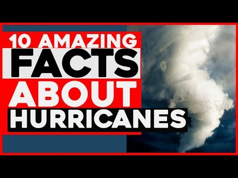 10 Amazing Facts About Hurricanes and tornadoes   hurricane facts Wikipedia   tropical Storm ,