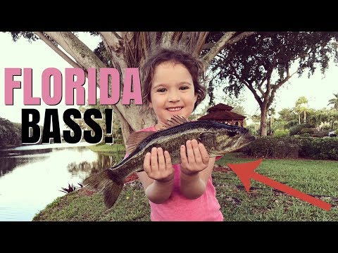 A Week of Florida Bass Fishing with Kids
