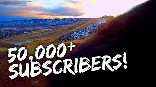 50,000 SUBSCRIBERS!