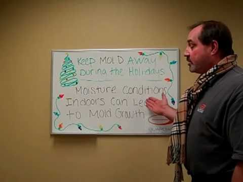 Keep Toxic Mold Away - Why Mold Problems Occur in Winter