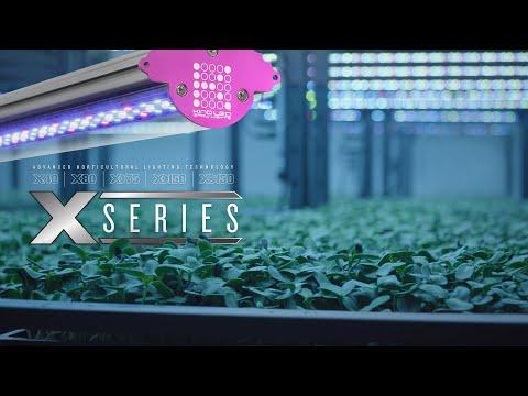 KIND LED Grow Lights X-Series Bar Lights