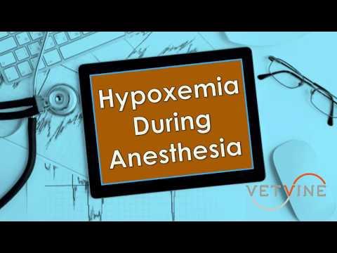 Hypoxemia During Anesthesia