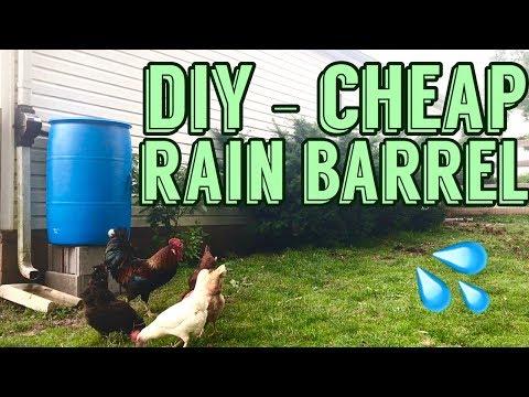 DIY Rain Barrel Installation CHEAP - using Fiskars Diverter