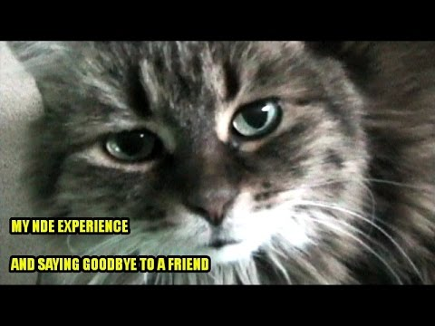 My NDE Experience... And Saying Goodbye to A Friend
