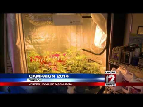 Oregon Washington Dc Legalize Marijuana