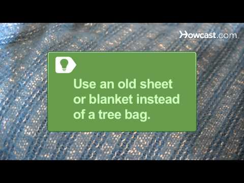 How to Remove a Christmas Tree from a Stand