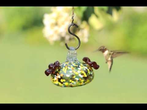 Small Multi-Color Glass Hummingbird Feeder - Wind & Weather