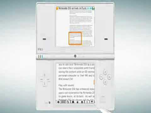 Nintendo dsi browser 1