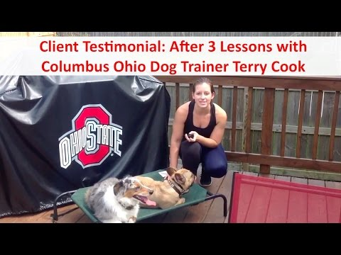 Top Columbus Ohio Dog Trainer Terry Cook: Client Testimonial: After 3 Dog Training Lessons
