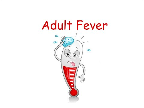 Adult Fever