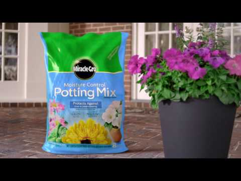 How to Use Miracle-Gro® Moisture Control® Potting Mix for Container Gardening