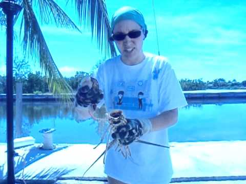 How to clean a Florida spiny lobster