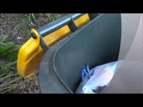 Help To Control Ants | Best 1 Carpet Cleaning and Pest Control