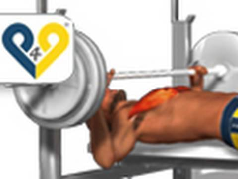 Chest Exercises: Bench Press