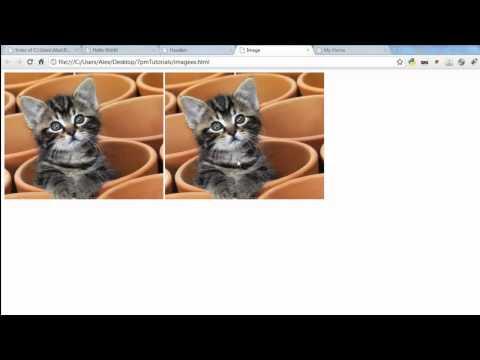HTML - The Basics