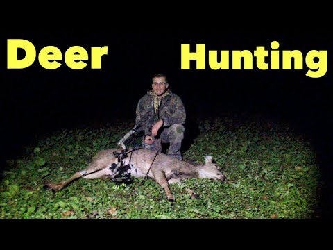 Bow Hunting Whitetails : Success From the Ground Blind