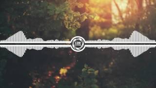 Upbeat EDM Mix 2017