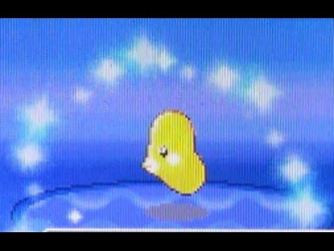 [WSHC] Live Shiny Luvdisc After 9,654 REs! (Pokemon HeartGold)