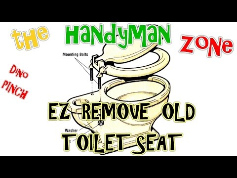 EASLY REMOVE OLD TOILET SEAT - RUSTED -  ROUNDED NUTS