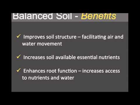 Why is carbon important to soil health?