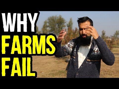 Why Our Dairy Farms FAIL in Pakistan & India | Azad Chaiwala Show