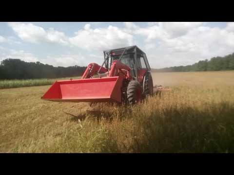 How DNR Prepares Dove Fields