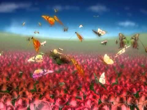butterfly flowers Motion graphic Animated Background - free video download