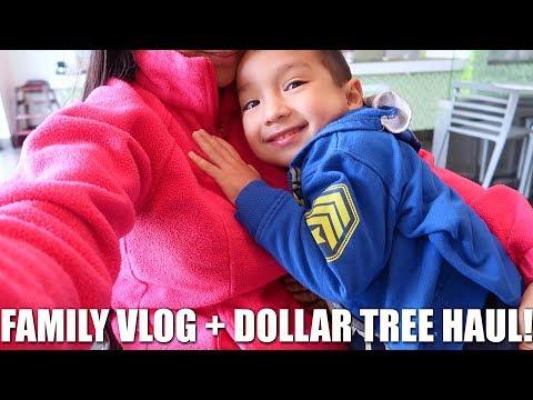 FAMILY VLOG + DOLLAR TREE HAUL!