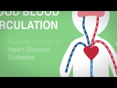 Why good blood circulation is important - Officiser Health Fact