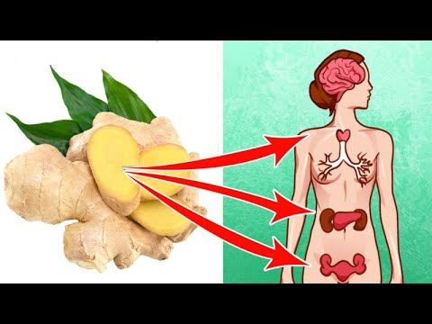 6 Life Saving Reasons to Eat Ginger Every Day