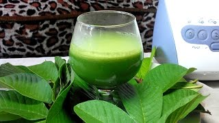 Guava leaves prostate cancer treatment