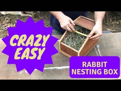 Crazy Cheap and Easy Rabbit Nesting Box - DIY Project