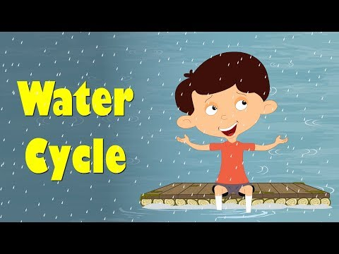 Water Cycle for Kids   It's AumSum Time