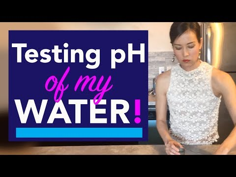 How to Test pH Level in Water at Home | My Drinking Water & Tap Water Alkalinity Test