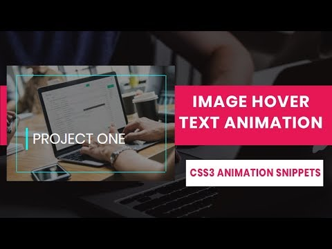 CSS3 Image hover with text Animation | CSS3 Animation Snippets | Beginners Tutorial